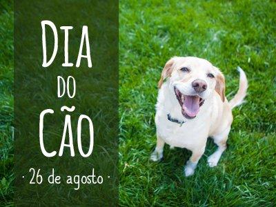 Dia do Cão