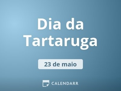 Dia da Tartaruga