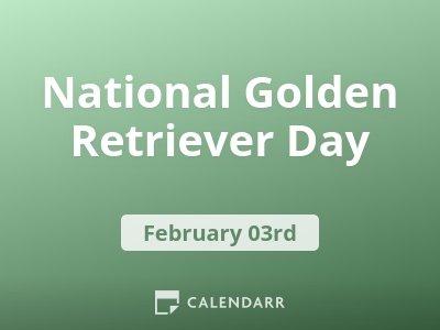 National Golden Retriever Day