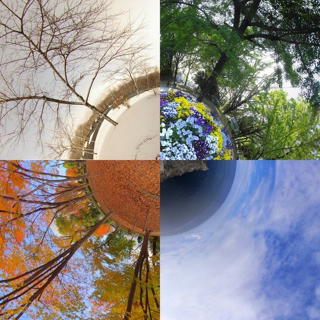 The four seasons of the year shown around a globe.