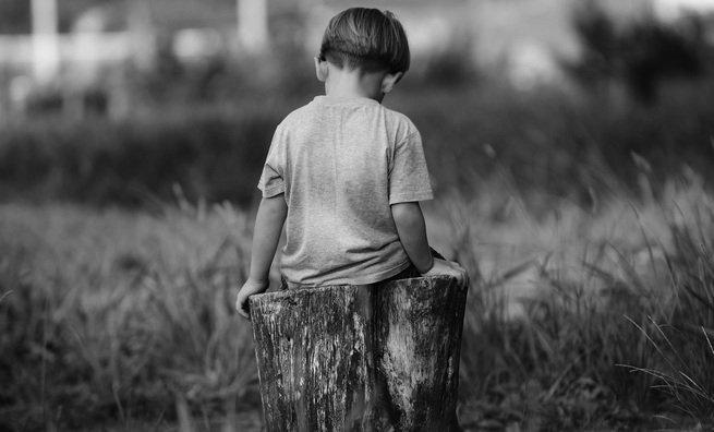 Criança sentada em tronco de árvore cortado, de costas